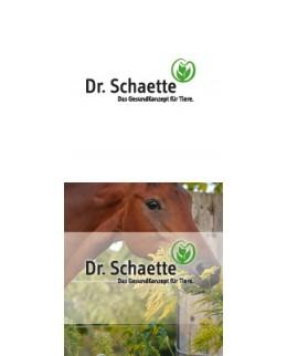 Dr-Schaette