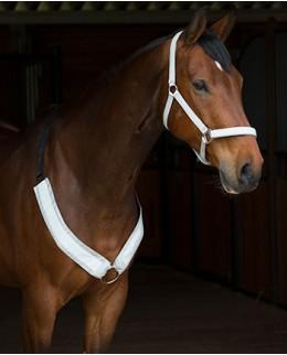 Светоотражающие товары для лошади