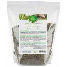 Травы для улучшения метаболизма