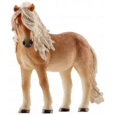 Исландский пони (кобыла)