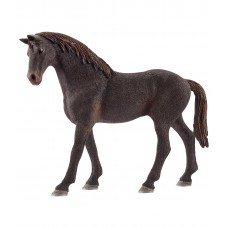 Чистокровная верховая лошадь (жеребец)