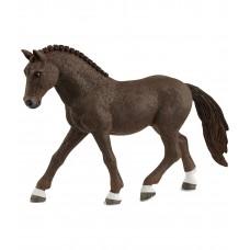 Немецкий верховой пони (мерин)