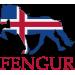FENGUR